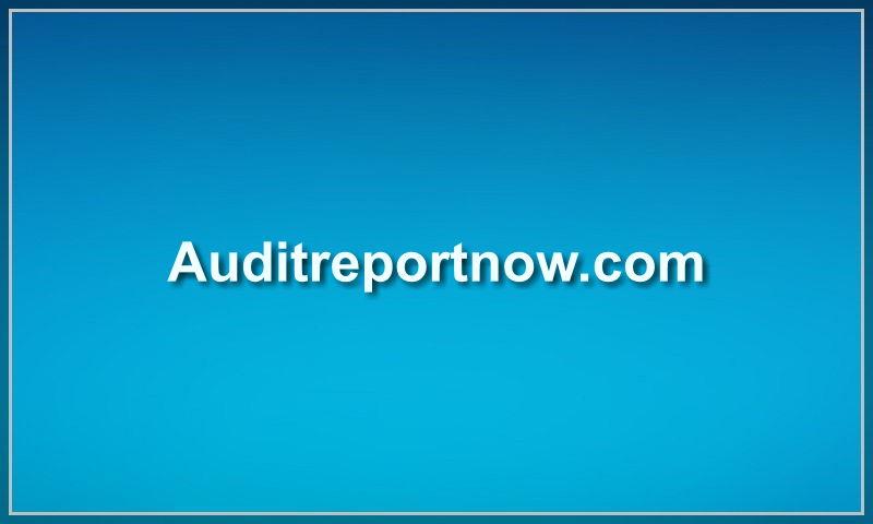 auditreportnow.com