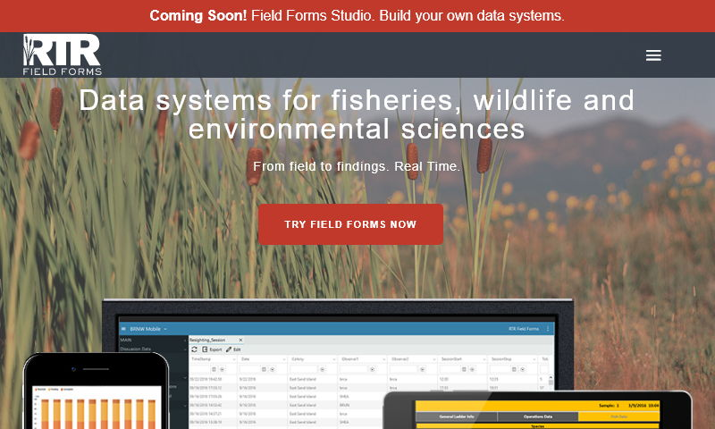 dataformstudio.com