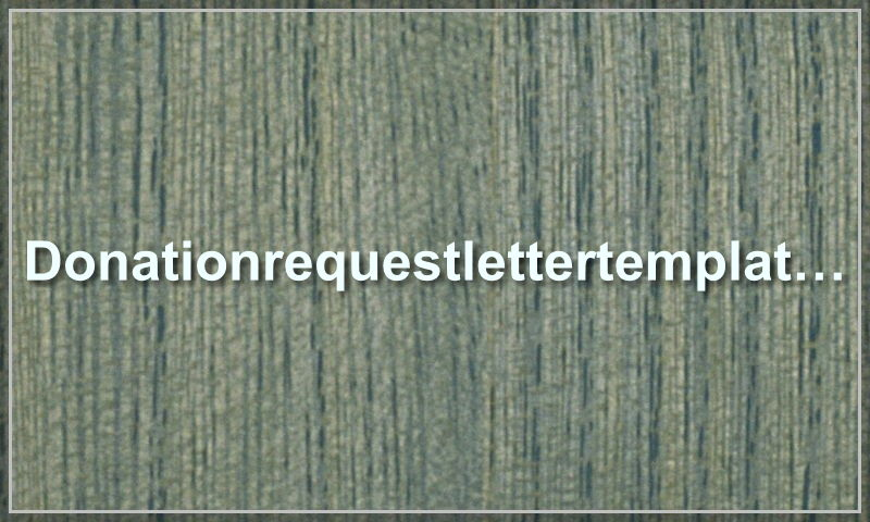 donationrequestlettertemplate.com