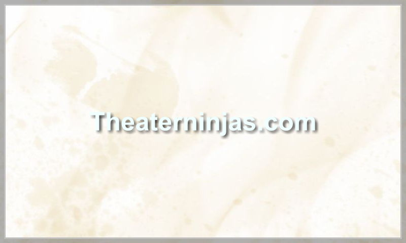 theaterninjas.com.jpg